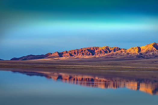 Walker Lake Reflections by Janis Knight