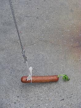 Walkin The Dog by Edward Hass