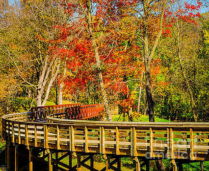 Walking Into Autumn by Mary Carol Story