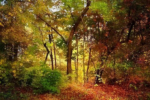 Walking into Autumn by Thomas Mack