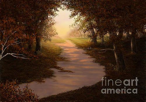 Walking Into the Light by Sena Wilson