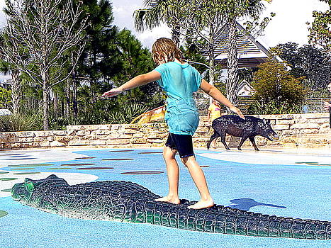 Walking on a Gator 000  by Chris Mercer