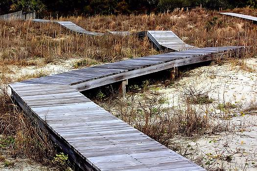 Rosanne Jordan - Walkway on the Dunes