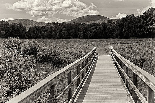 Walkway To A Mountain monochrome by Nancy  de Flon