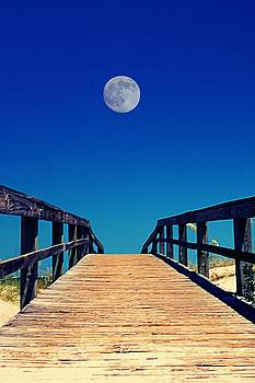 Walkway to the Beach by Paul Wilford