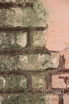 Wall Abstract by AR Annahita