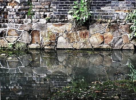 Wall Reflection by Kathy Daxon