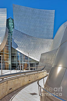 David  Zanzinger - Walt Disney Concert Hall Vertical
