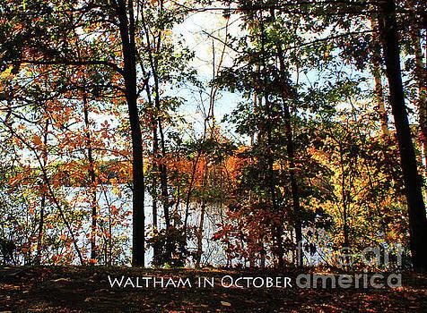 Waltham in October by Rita Brown