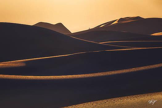Wanderer  by Peter Coskun