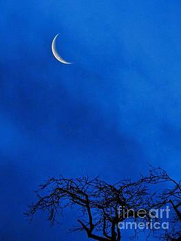 Waning Crescent by Peggy J Hughes