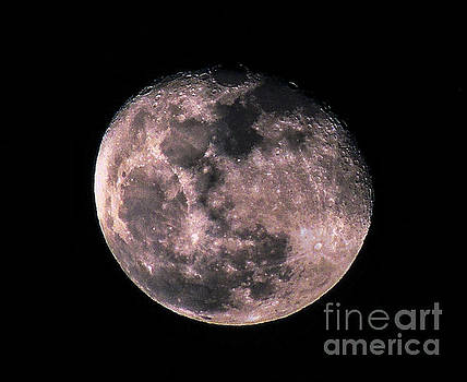 Waning Gibbous Moon by Mim White