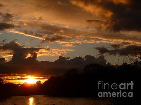 Wanstead Park Sunset by Vicki Spindler