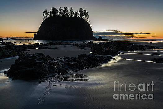 Washington Coastal Serenity at Dusk by Mike Reid