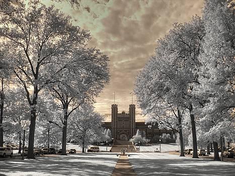 Washington University by Jane Linders