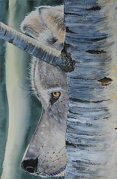 Watcher in the Wood by John W Walker