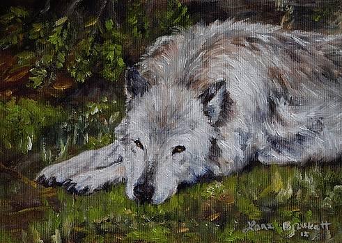 Watchful Rest by Lori Brackett
