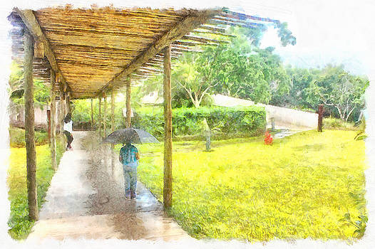 Watching the rain by Ashish Agarwal