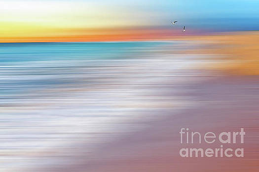 Water Abstraction II with Gulls by Kaye Menner by Kaye Menner