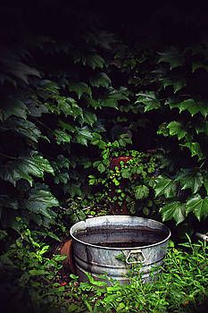 Water Bearer by Jessica Brawley