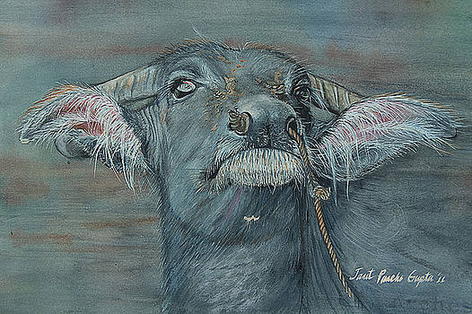Water Buffalo Painting by Janet Pancho Gupta