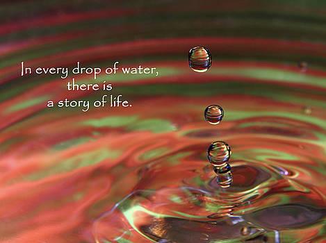 Water Drop 1 by Vicki McLead