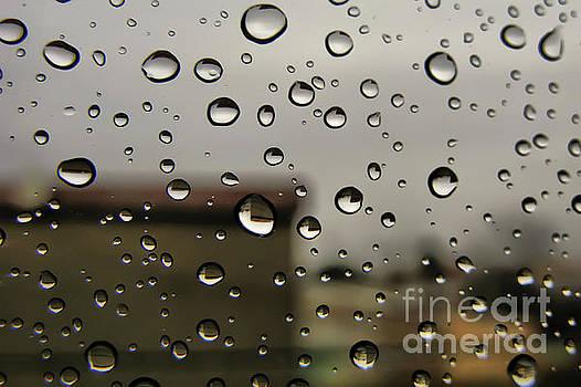 Water drops by Daliana Pacuraru