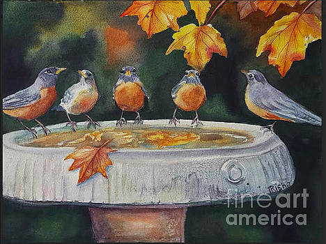 Water Fountain Chat by Patricia Pushaw