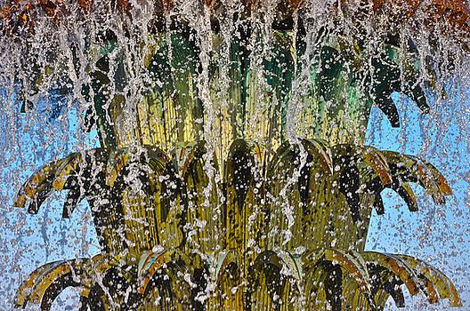 Water Fountain Light Charleston by Lori Kesten