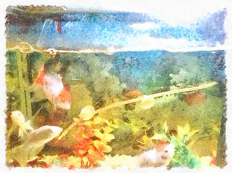 Water level in an aquarium by Ashish Agarwal