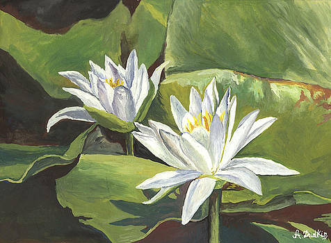 Water lilies by Alexander Dudchin