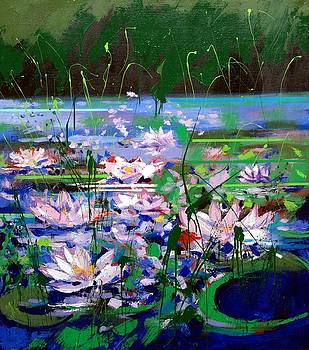 Water lilies by Mario Zampedroni