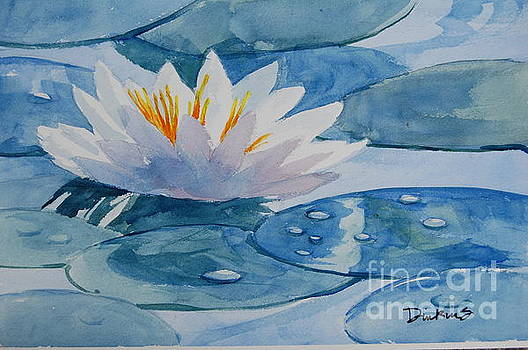 Water Lilly by Bill Dinkins