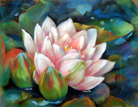 Water Lily by Usha P