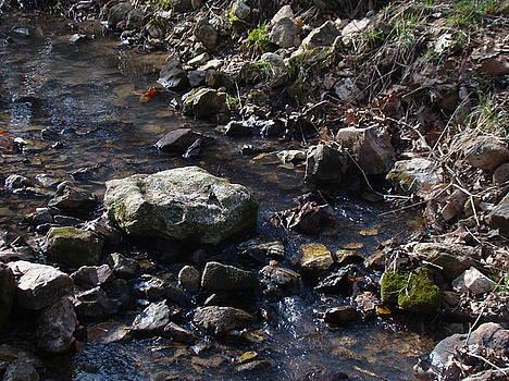 Water Music by Martin Bellmann