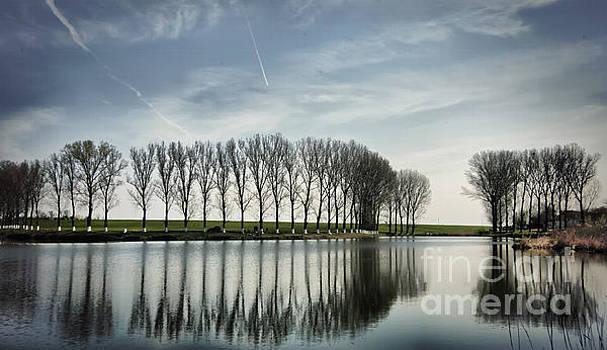 Water reflection by Daliana Pacuraru