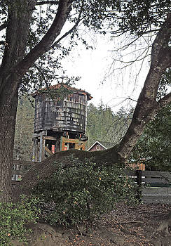 Water Tower @ Roaring Camp by Grace Dillon