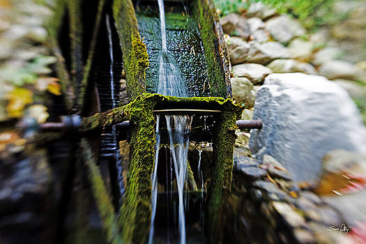 Scott Pellegrin - Water Wheel