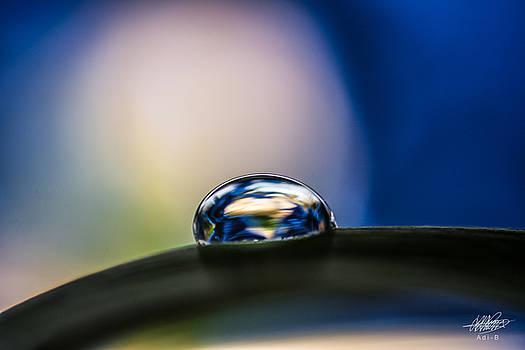 Water World by Adnan Bhatti