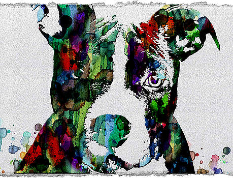Watercolor Dog Art Prints and Posters by Robert R Splashy Art Abstract Paintings