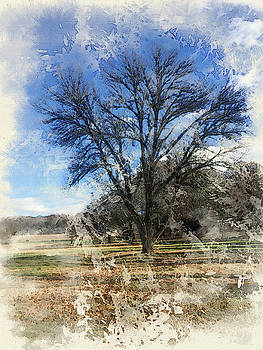 Watercolor-Tree at Work by Jeff Oates Photography