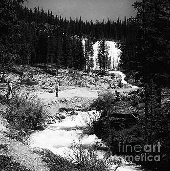 Waterfall in Among The Pines  by Chris Berry