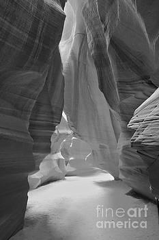 Adam Jewell - Waterfall Of Light - Black And White