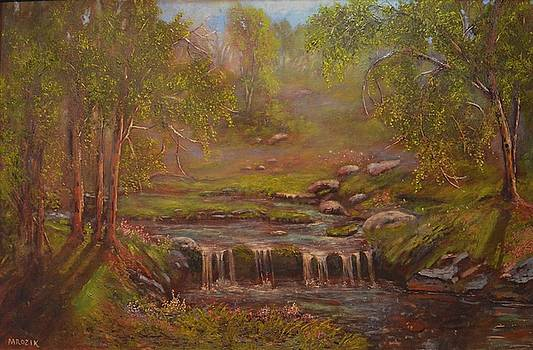 Waterfall Paridise by Michael Mrozik
