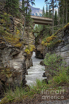 Waterfall running through Maligne canyon by Patricia Hofmeester