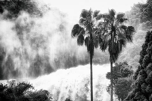Waterfall Sounds by Hayato Matsumoto