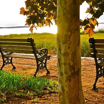Waterfront Park Bench by Lori Kesten