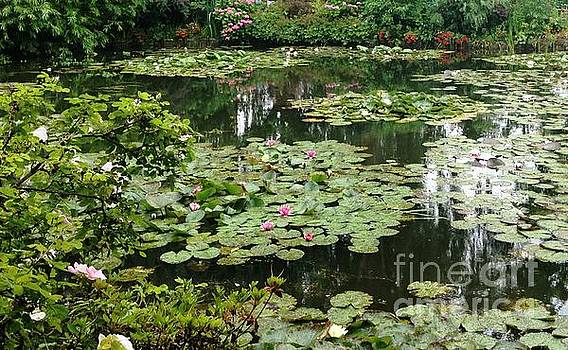 Waterlilies at Monet's Gardens Giverny by Therese Alcorn