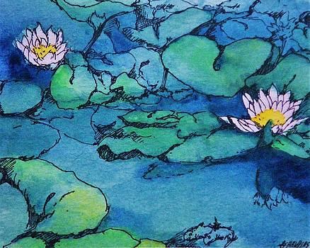 Waterlillies by Timothy Hawkins