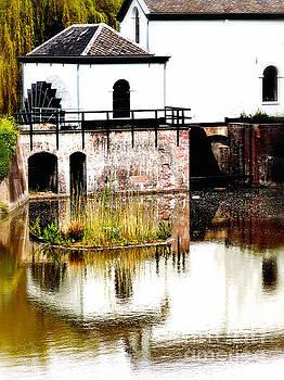 Nick  Biemans - Watermill on a lake
